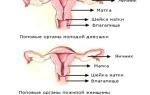 Увеличение шейки матки при климаксе