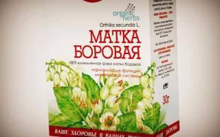 Препараты с фитоэстрогенами при менопаузе перечень растительные