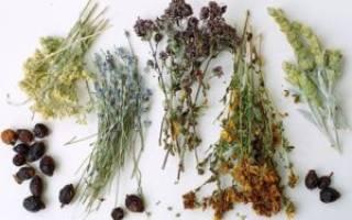 Травы которые помогают при цистите
