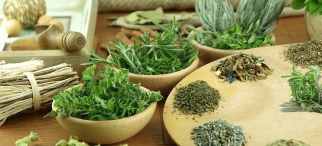 Травы для лечения хронического цистита у женщин