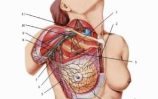 Увеличение лимфоузлов в период менопаузы