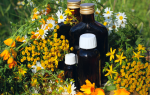 Травы для лечения молочницы в кишечнике
