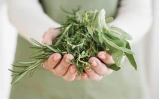 Растения с женскими гормонами при климаксе